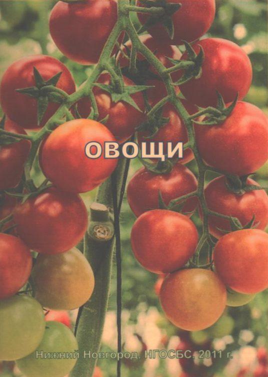 """Обложка книги """"Овощи"""". Помидоры"""