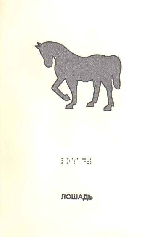 """Иллюстрация к книге """"Домашние животные"""". Лошадь."""