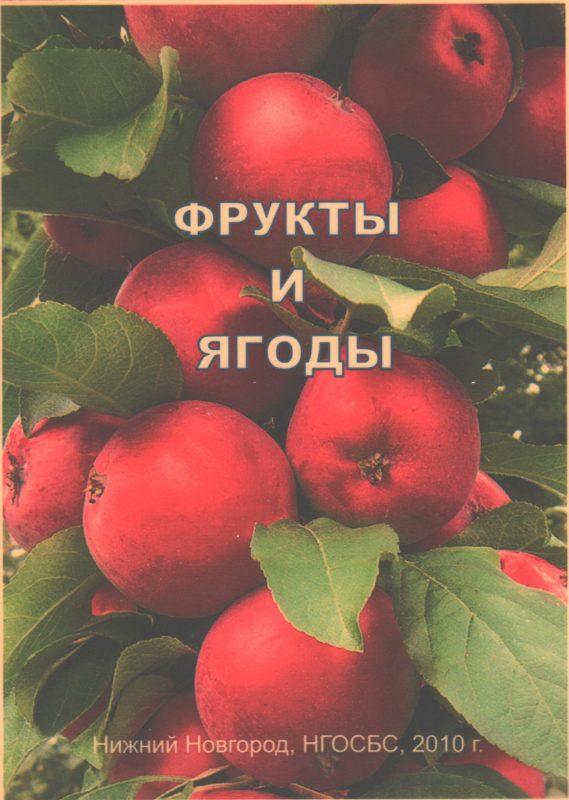"""Обложка книги """"Фрукты и ягоды"""". Яблоки"""