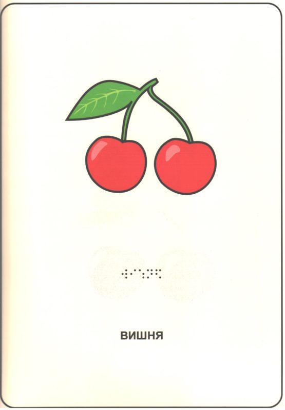 """Иллюстрация к книге """"Фрукты и ягоды"""". Вишня"""