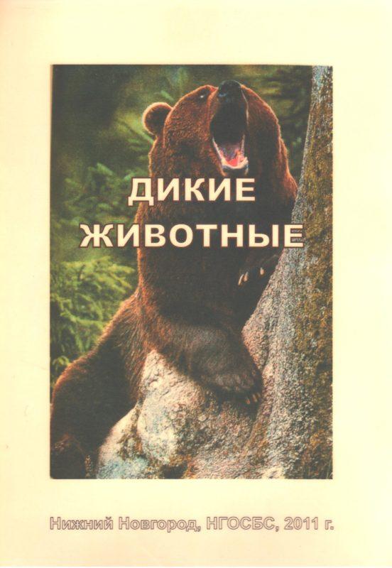 """Обложка книги """"Дикие животные"""". Медведь"""